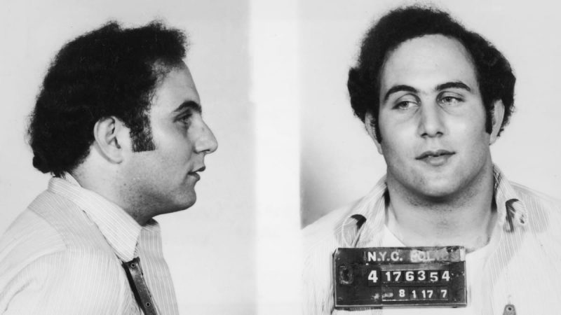 Son of Sam, Netflix