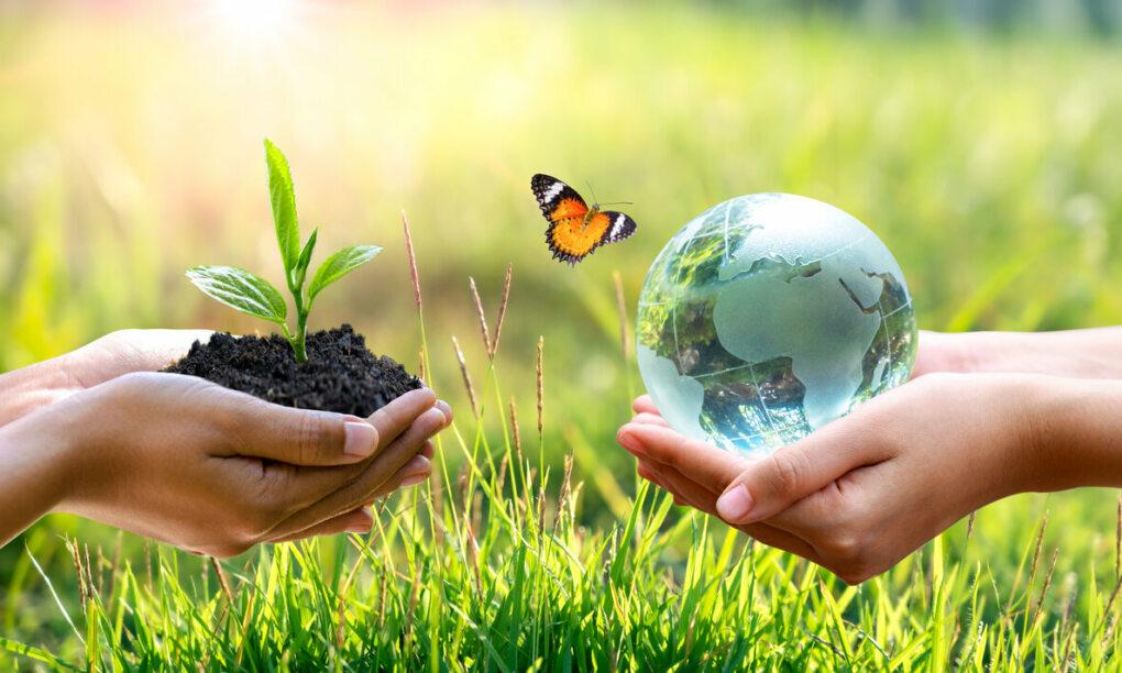 save planet earth token crypto