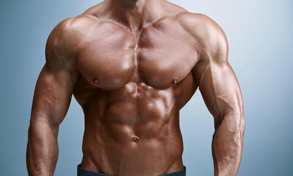 5 borstspier oefeningen
